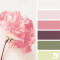 Petal hues for the bathroom - Bathroom Design Ideas