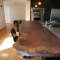 Reclaimed wood plank breakfast bar counter - Kitchen Counter Options